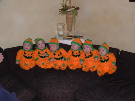kate's 6 babies
