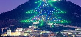 World's Largest Mount Ingino Christmas Tree