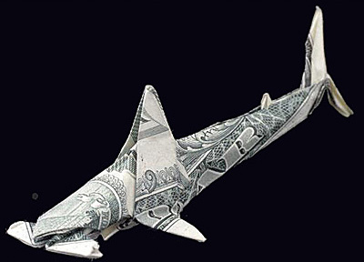 One Dollar Hammer Head Shark