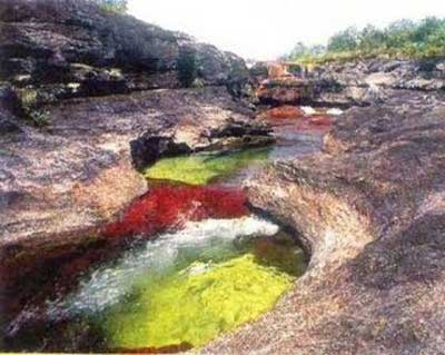 cano cristales images