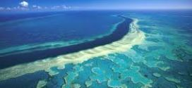 The Great Barrier Reef – world's largest coral reef