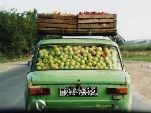 funny transportation