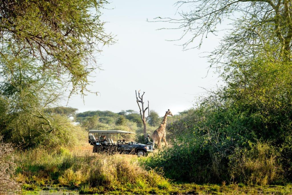 Pamushana-Lodge-Zimbabwe