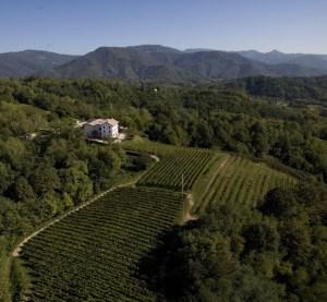 Azienda Aquila del Torre - Colli Orientali del Friuli