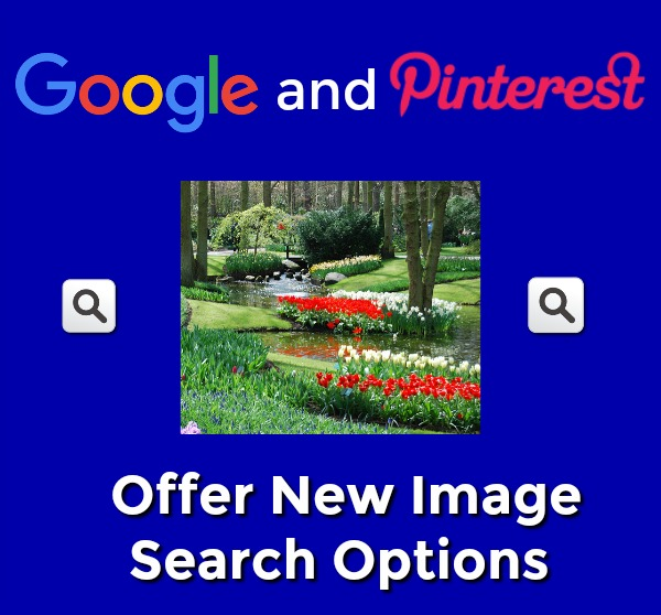 Image Search Options Google Pinterest