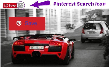 Pinterest Chrome Extension Search icon