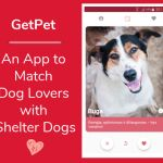 GetPet – An App to Match Dog Lovers with Shelter Dogs