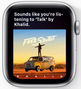 Song Identification WatchOS 6