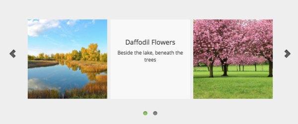 WordPress Image Scroller | WordPress Plugin