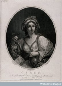 V0035920 Circe. Engraving by W. Sharp, 1780, after J. Boydell Credit: Wellcome Library, London. http://wellcomeimages.org