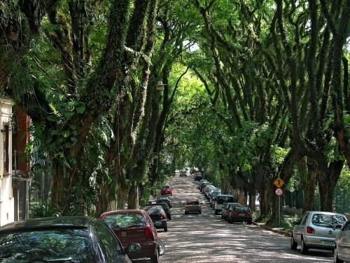 Rua Gonçalo de Carvalho, Brazil