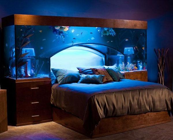 Fish Tank Headboard Ideas
