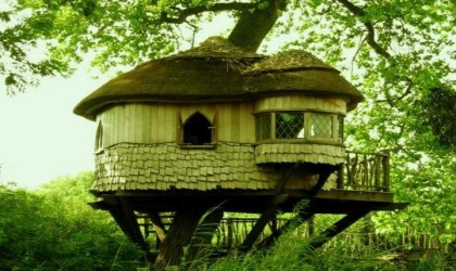 TreeHouse in SA