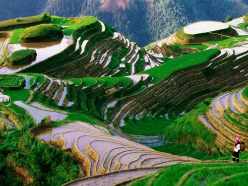 10 Stunning Photos