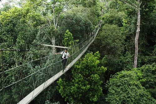 Highly Dangerous Bridges