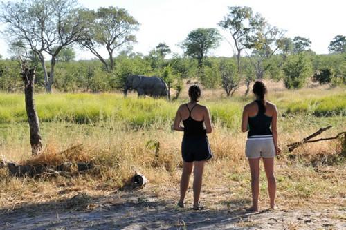 Okavango-Delta Botswana