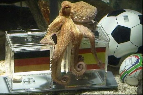 Paul, the Octopus