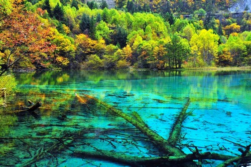 Five Flower Lake in china