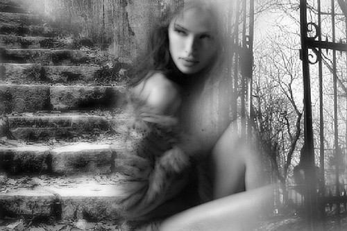 dream in black and white