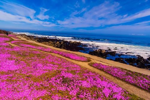 Coastal Trails California, USA