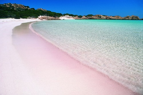 Pink Beach in Budelli
