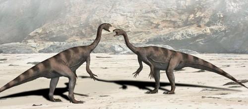 Plateosaurus Weird Prehistoric Creatures