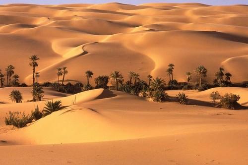 Wonderful Oases Seba, Libya