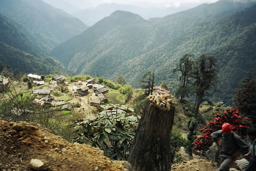 The Dzongri Trek Ideas for Holiday in Sikkim