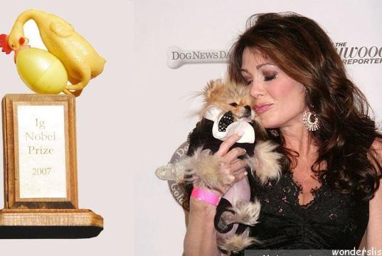 Top 10 Weirdest Awards