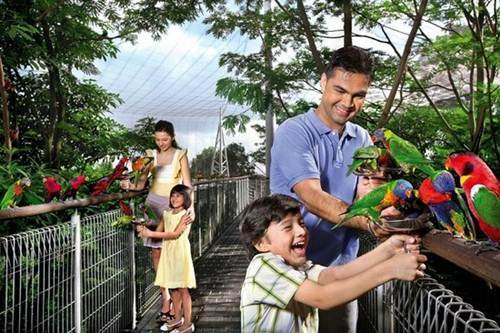 attractions in Singapore
