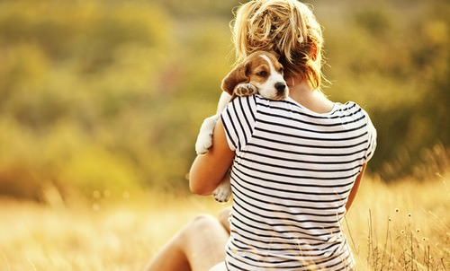 Surprising Health Benefits of Owning a Dog