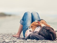 Dog Behaviors, Things Your Dog Does and What It Means