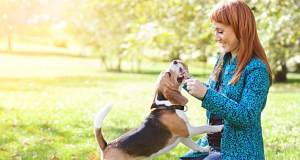 Top 10 Home Remedies for Allergies in Dogs