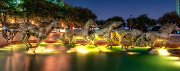 The Mustangs of Las Colinas