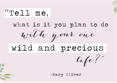 Mary Oliver-one life