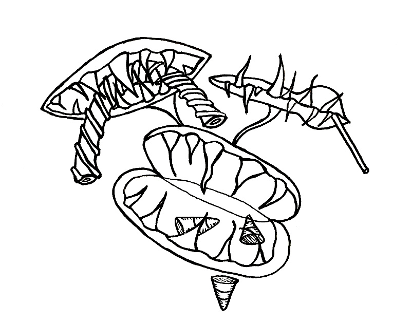 venus coloring page - creepy halloween faces and candy loving venus fly traps