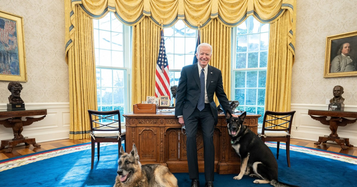 Presidential pets: Dogs and cats in the White House.jpg
