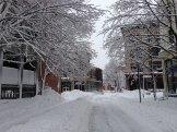blizzard-2-013