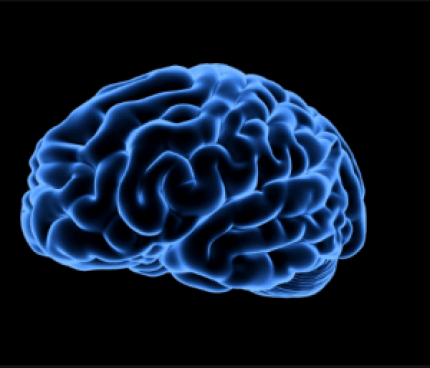 Cara Meningkatkan Ketajaman Otak
