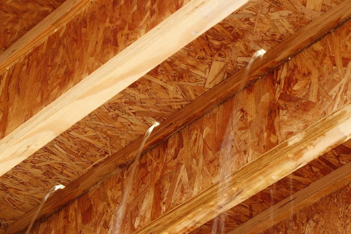 Weyerhaeuser Weyerhaeuser Edge Gold Flooring Panels