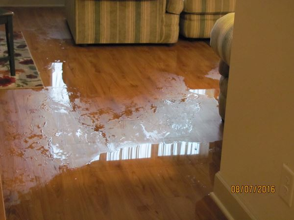 How to dry out wood floors thefloorsco for How to dry wet wood floor