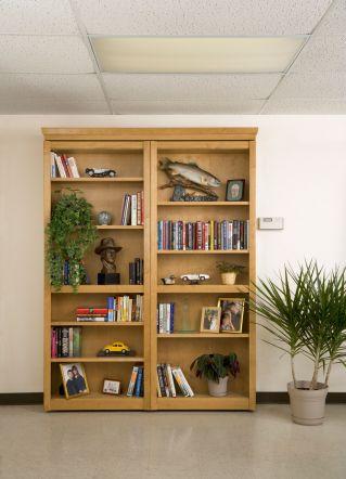 wooden-bookshelf-door-upfront-closed-nothing-behind