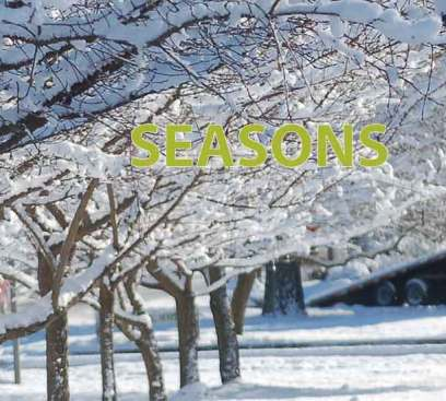Seasons, winter 2019