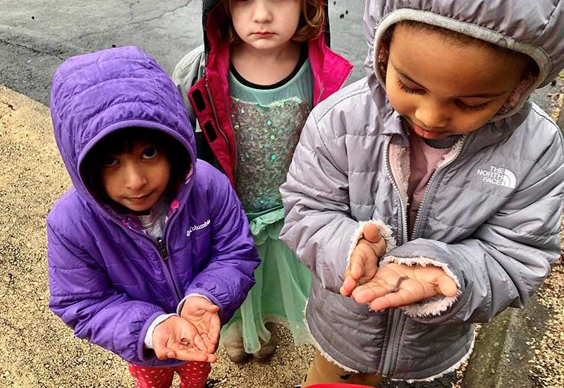 Preschool girls hold earthworms on the flat of their hands