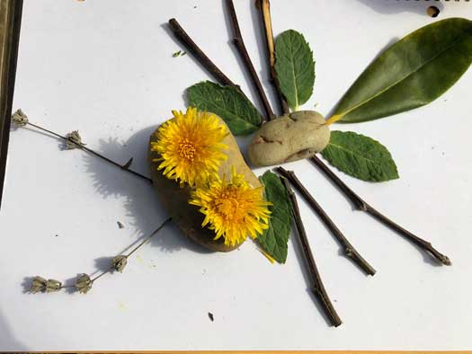 """An """"insect"""" made out of leaves, twigs and dandelions"""
