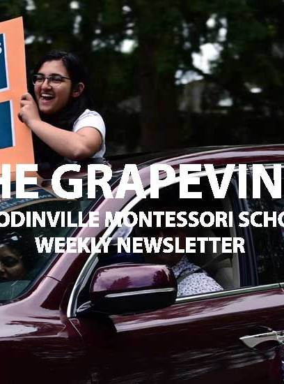 The Grapevine, May 6, 2020