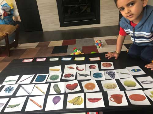 A preschool boy is grouping items by colors.