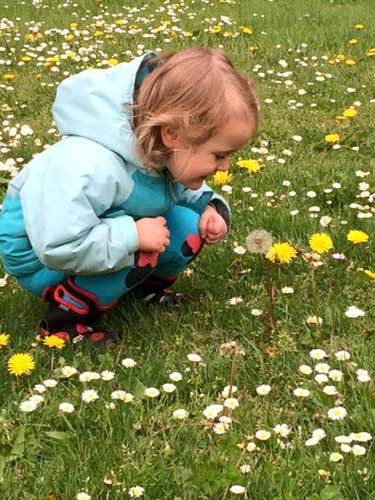 A toddler bends down in a field of dandelions, looking delighted