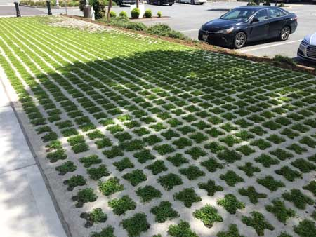 Concrete and grass sidewalk decoration