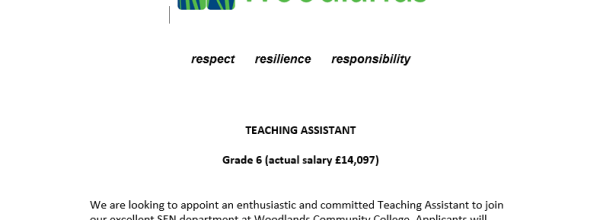 Teaching Assistant Wanted